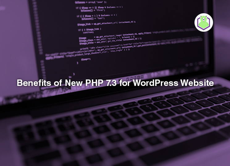 Benefits of New PHP 7.3 for WordPress Website - the image shows a code on the computer screen